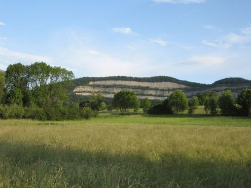 NSG-Neuffener-Hoernle (Foto: Kreh)